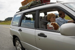 family driving with dog